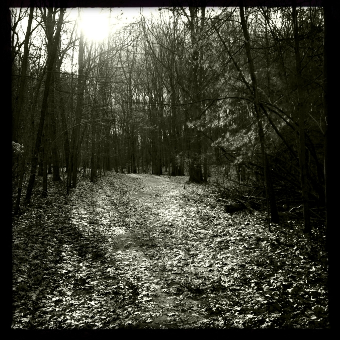 Mendon Ponds Trail